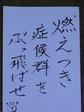 2009010101.JPG