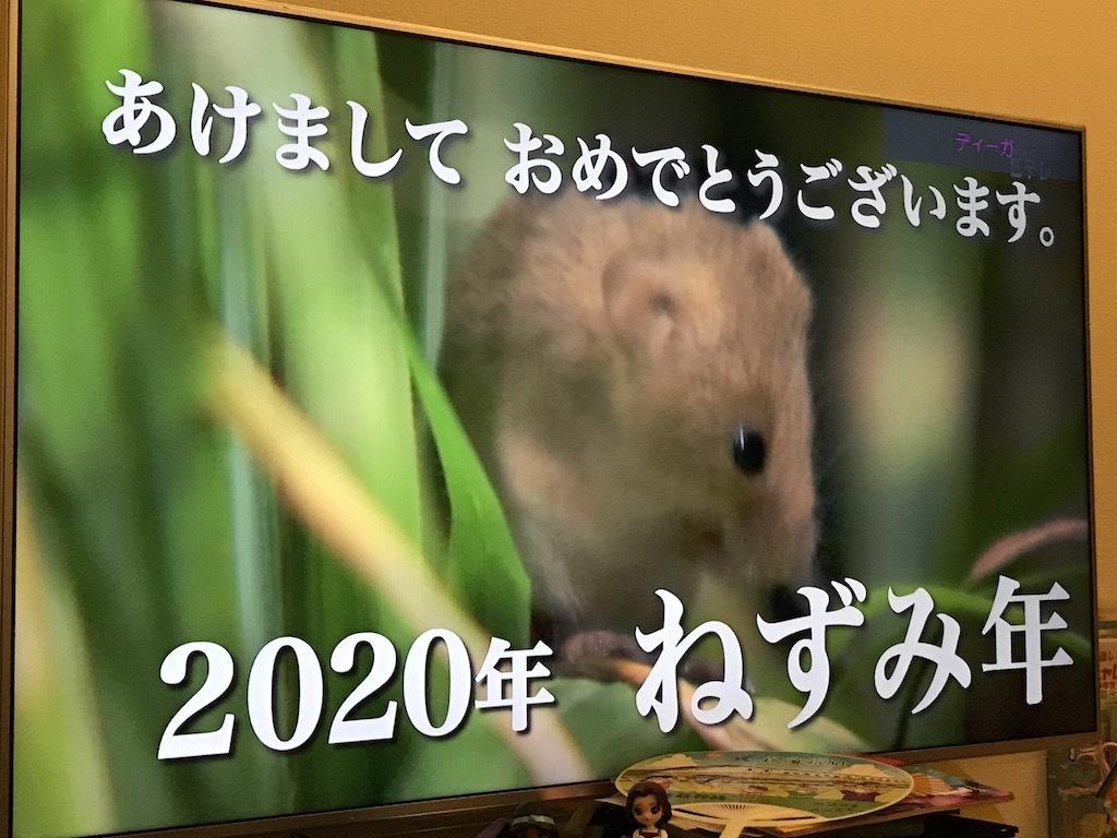 2020010101.jpg